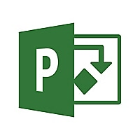 Microsoft Project Professional 2019 - license - 1 PC - with Project Server