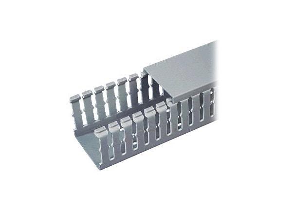 Panduit PANDUCT Type F Narrow Slot Wiring Duct - cable raceway