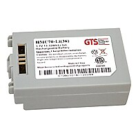 GTS - handheld battery - Li-Ion - 3600 mAh