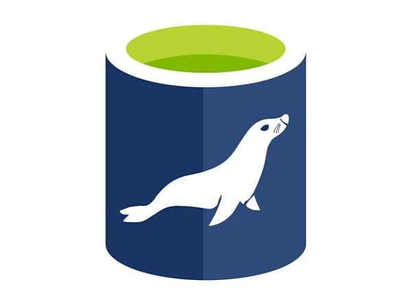 Microsoft Azure Database for MariaDB General Purpose - Storage - Data Store