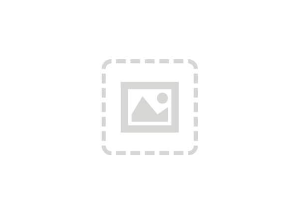 Cisco Wide Area Application Services Right to Use (RTU) - license - 200 con