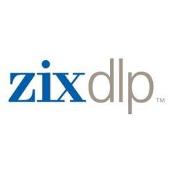 ZixDLP Virtual - license - 1 user