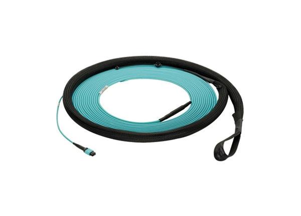 Panduit QuickNet Small Diameter Trunk Cable Assemblies - network cable - 9.