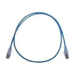 Belden patch cable - 6 ft - blue