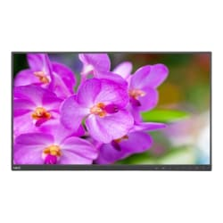 NEC MultiSync EA241F-H-BK - without stand - LED monitor - Full HD (1080p) -
