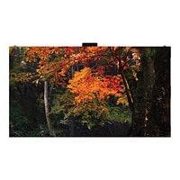 LG LAS018DB2EF LAS Fine-pitch Series LED video wall - Full HD