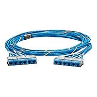 Panduit QuickNet Pre-Terminated Cable Assembly - network cable - 33 ft - bl