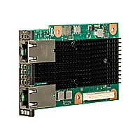 Intel Ethernet Network Connection OCP X557-T2 - network adapter - OCP - 10G