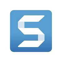 Snagit 2020 - license - 1 user
