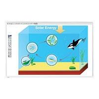 mimio MimioBoard 871T - interactive whiteboard - USB
