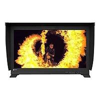 "EIZO ColorEdge PROMINENCE CG3146-BK - LED monitor - 31.1"""