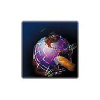 SonicWall Global Management System Standard Edition - license - 25 nodes