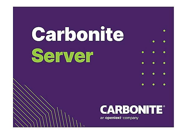 Carbonite Server Hybrid Bundle - subscription license (1 year) - 12 TB capa