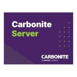 Carbonite Server Hybrid Bundle - subscription license - 10 TB capacity