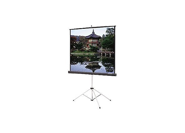 Da-Lite Carpeted Picture King with Keystone Eliminator - projection screen