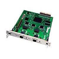 Juniper Networks Dual-port E1 Physical Interface Modules (PIM) - DSU/CSU